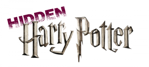 Hidden Harry Potter Logo